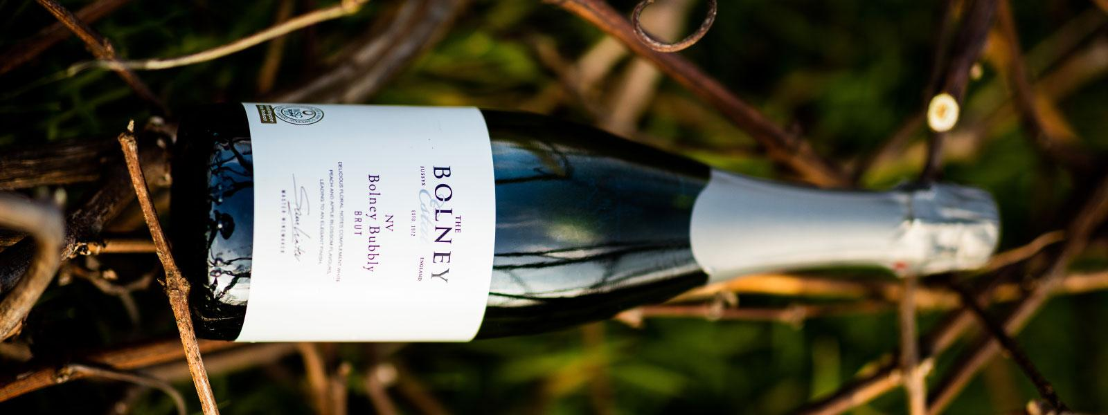Selecting the right wine with Bolney Wine