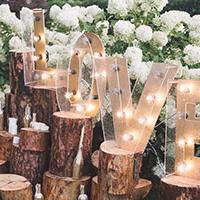 Upcoming Wedding Events With Sparkling Day Events